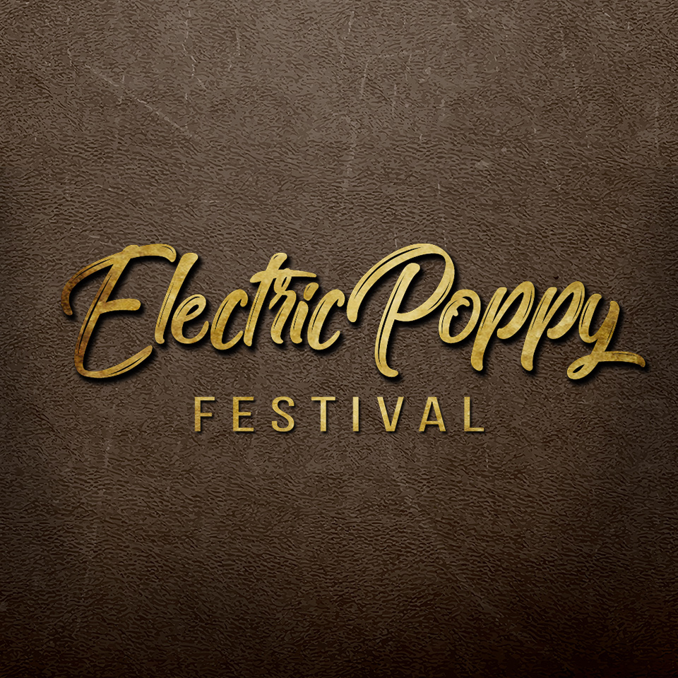 electric_poppy_afrojack_fb_profil